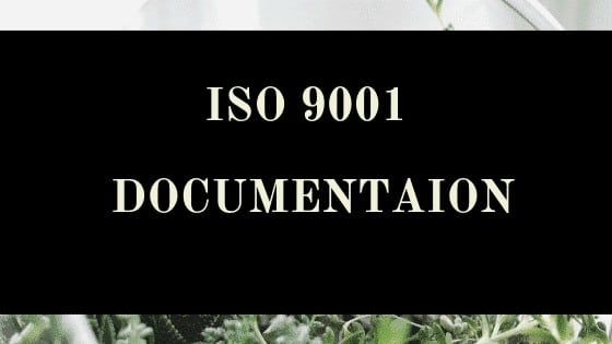 Requirements for ISO 9001 Documentation